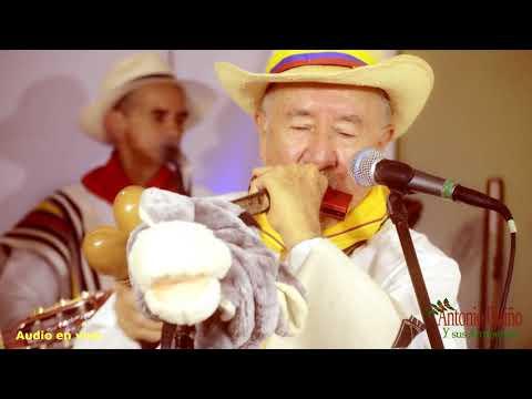 la mula rucia (Antonio Patiño )