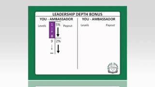 9  Boni de profondeur de leadership en fran ais  mp4