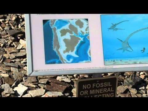 Dinosaur Ridge: Western Interior Seaway