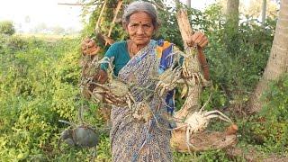 My Grandma's Village Style Crab Curry || Myna Street Food || Country Food