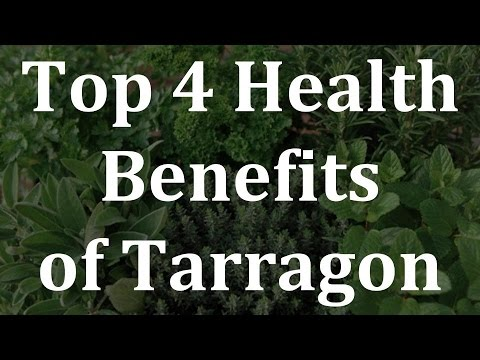 Top 4 Health Benefits of Tarragon