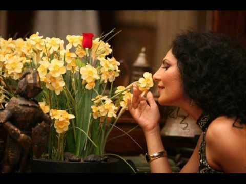 Ayşe Dinçer - Sev dedin bende sevdim