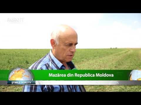 Mazarea din Republica Moldova