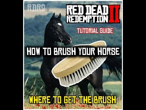 HOW TO GET A BRUSH AND CLEAN HORSE | RED DEAD REDEMPTION 2