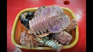제주 서귀포올레시장 딱새우, 부채새우 Seogwipo Ole Market red-banded lobster / Japanese fan lobster