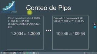 Como contar pips y cuanto comprar en Forex