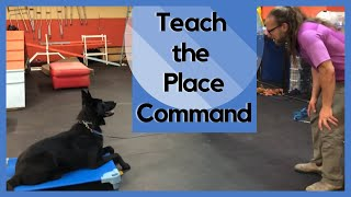 DIY Do it yourself Place command-2019 Step by Step from food to remote collar