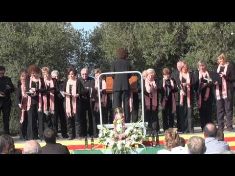 Godall, 20101114 Agrupacio Musical de Godall presentacio Lacrima Olea Mil·lenaria 1