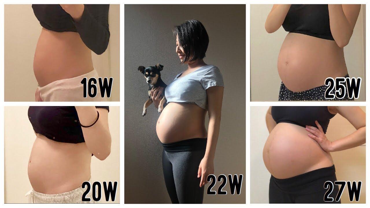 七 ヶ月 妊娠