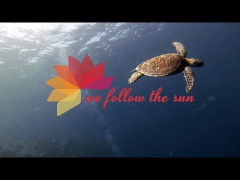 Diving in Sipadan - Underwater Wonderland - Backpacking Malaysia - GoPro