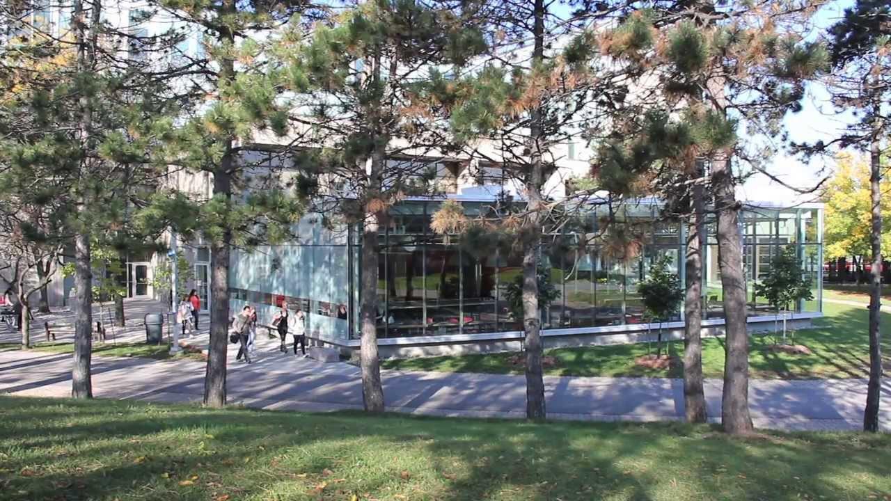 Seneca College Newnham Campus Youtube