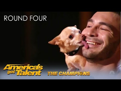 Christian & Percy: The CUTEST Dog Act On @America's Got Talent Champions