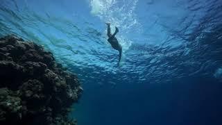 Плавание, часть 7. Олег Гаврилин, Дахаб, Блю Холл, заплыв в тёплой воде.