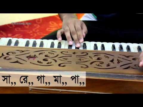 Harmonium Lesson SA RE GA MA tutorial
