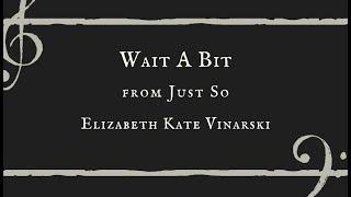 Wait A Bit - Elizabeth Kate Vinarski