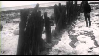 Les Amours Jaunes (1958, Jean Rollin)