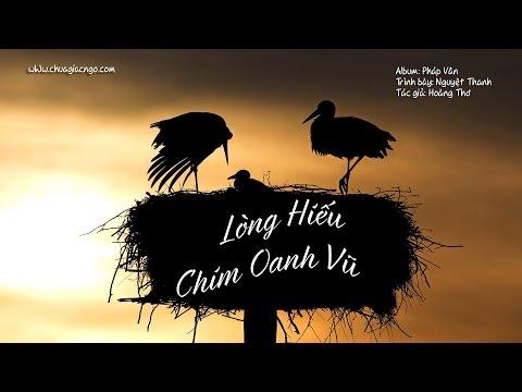 Lòng hiếu chim oanh vũ