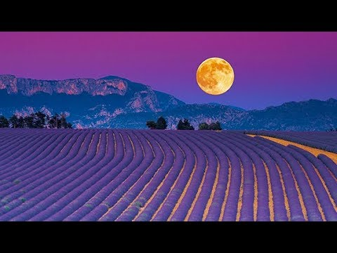 9 Hours Music for Sleeping: Meditation Music, Relaxing Sleep Music, Soothing Relaxation Music