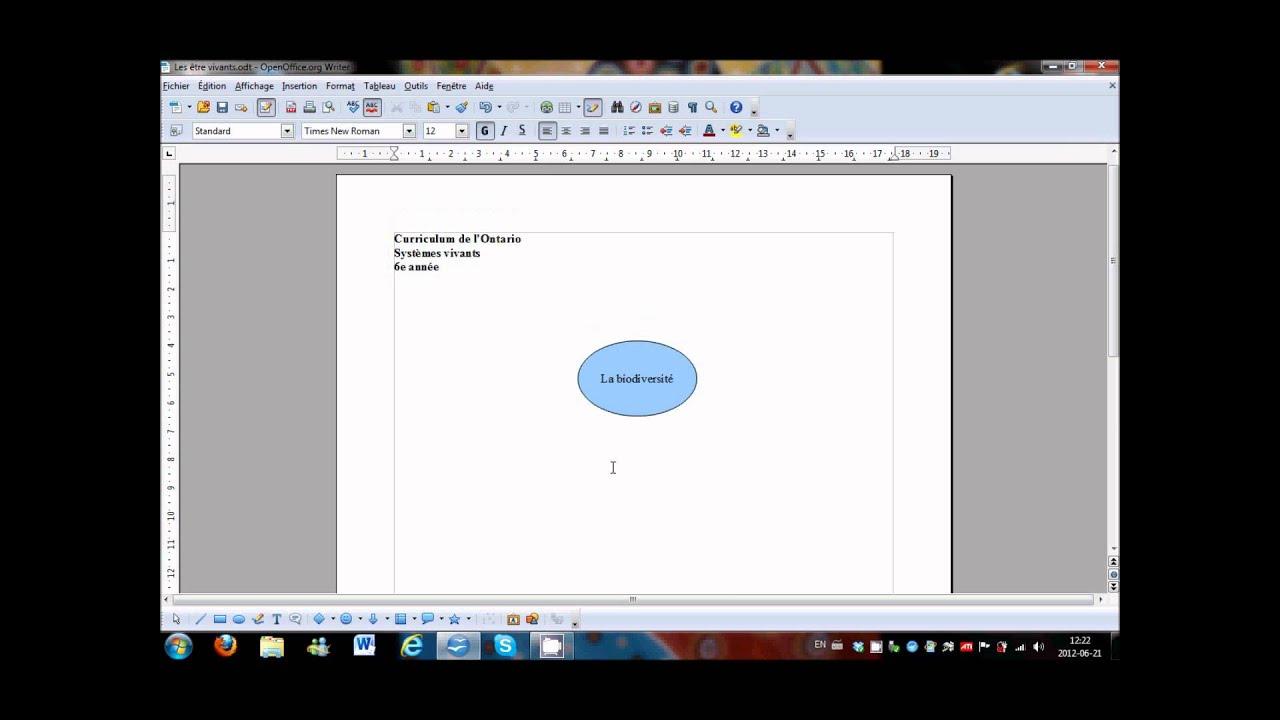 OpenOffice Creer Et Inserer Une Carte Conceptuelle
