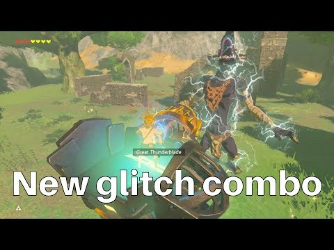 Zelda BotW: Electric Flying Machine Glitch