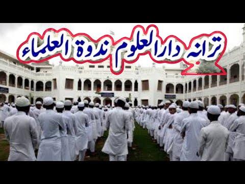 تارانا ( دار العلوم ديوبند ) زبردست خوبصورت   TARANA Darul uloom Deoband 2018