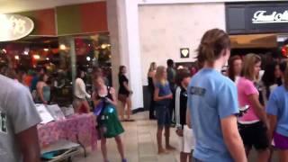 Okemos Mall Freeze Mob
