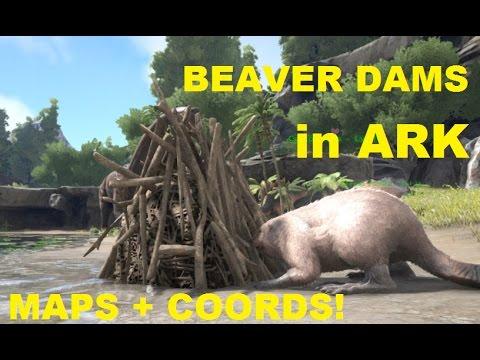 Giant Beaver Dam - Official ARK: Survival Evolved Wiki