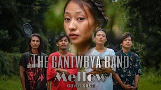 Mellow : Rohit Shakya X Sajjan Raj Vaidya  / COVER BY THE GANTWBYA BAND #sajjanrajvaidya #mellow