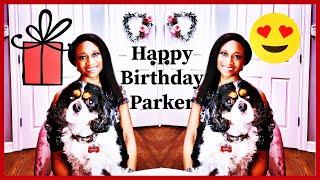 Dog Birthday Celebration * Happy 4th Birthday * Cavalier King Charles Spaniel