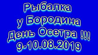 Рыбалка у Бородина 10 08 2019