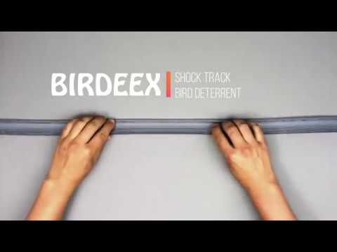 BIRDEEX BY BIRD-TECH- BIRD DETERRENT PRODUCTS