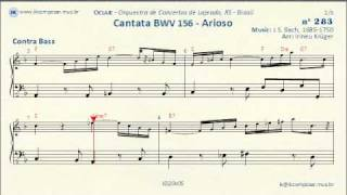 283 - Cantata BWV 156 J.S.Bach - (Cello - Contra Bass)