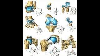 Лечение суставов 100% способ для большинства проблем