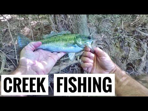 Creek Fishing Adventures Take Over