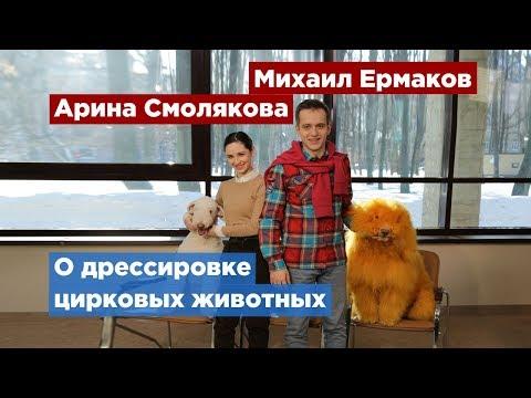 Артисты шоу «ЭпиЦЕНТР мира» поделились секретами правильной дрессировки животных