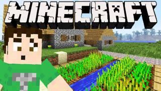 Minecraft - DON