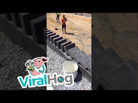 Dominoes with Bricks (Additional Angle) || ViralHog
