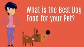 Best Dog Food Reviews 2015 | Healthiest Dog Food Brands For Puppies And Adults