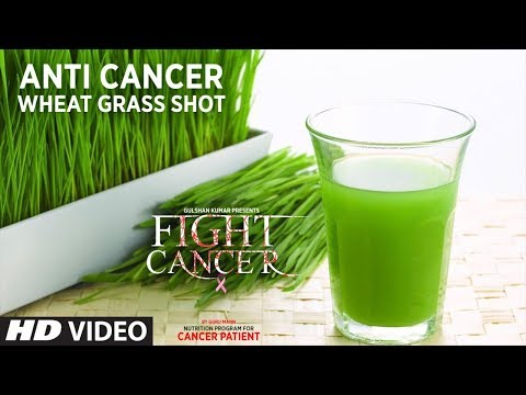 FIGHT CANCER- Wheatgrass Shot | Nutrition Plan Designed & Created by GURU MANN