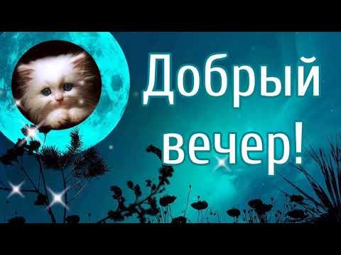 Добрый вечер! Пожелание доброго вечера и спокойной ночи.