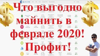 Что выгодно майнить в феврале 2020! Профит!