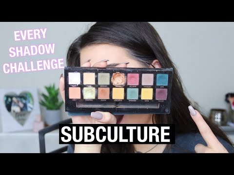 Using EVERY EYESHADOW In The Palette CHALLENGE