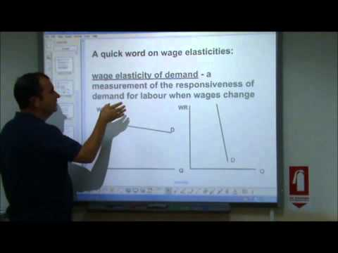 AS-Level Economics Video 15 - Labour Markets