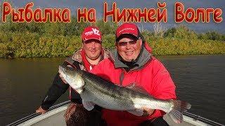Ловля сазана - Рыбалка - Туризм