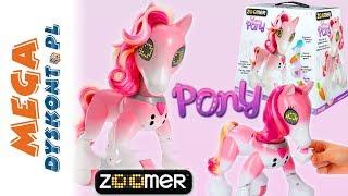 Zoomer Show Pony • Interaktywny kucyk • Spin Master