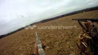 Goose Hunting PA Opener