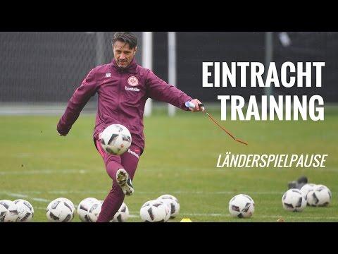 Länderspielpause: SGE Training