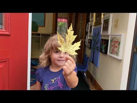 Weems Creek Nursery School | A Virtual Tour