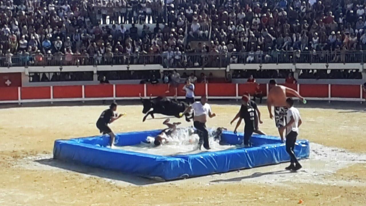 Grau du roi toro piscine 2016 09 10 taureaux vl youtube for Piscine mauguio