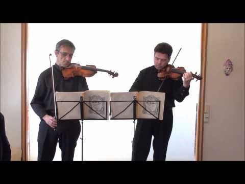 Bach: concerto for Two Violins in D minor BWV 1043